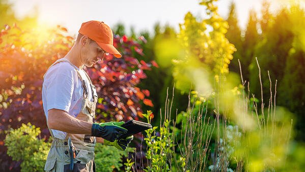 5 reasons why landscaping business software matters
