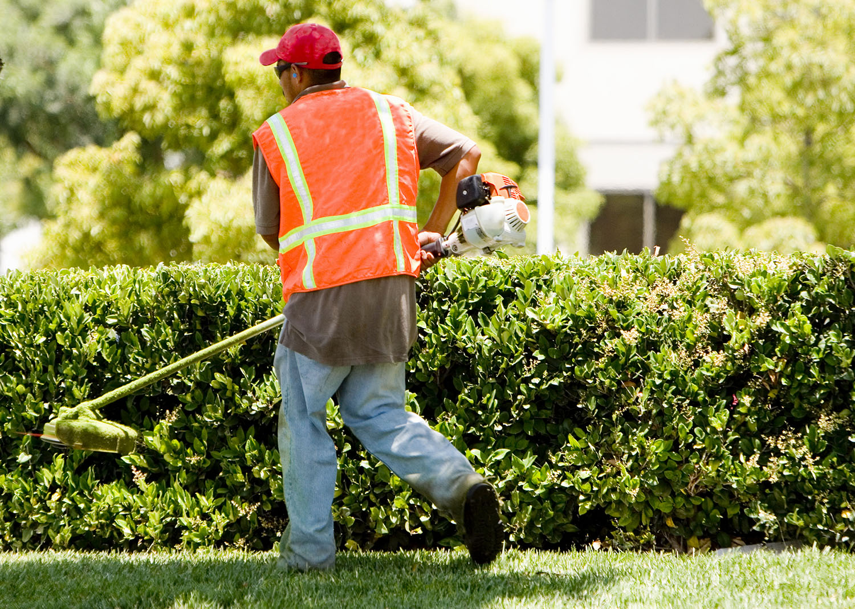 landscape-maintenance-worker-using-trimmer