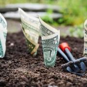 Landscape Business Software Investment