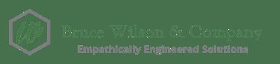 Bruce Willson Company LOGO