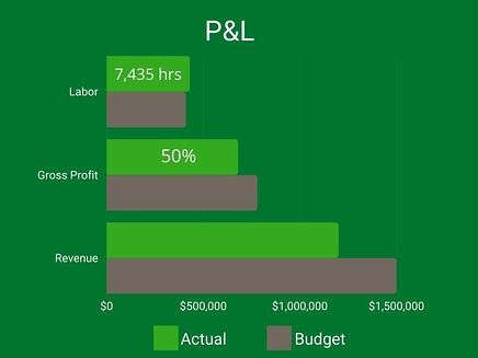 P&L KPI chart