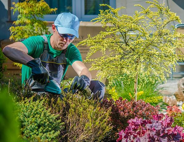 Why landscaping jobs lose money and what to do about it