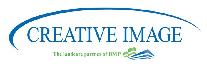 Aspire in Action: Creative Image Landscaping