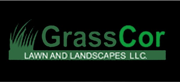 Aspire in Action: GrassCor