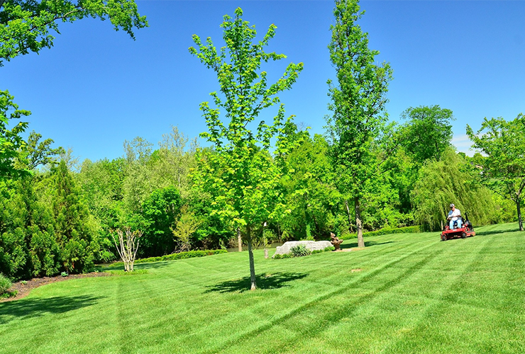 How to rationalize and manage overhead expenses in your landscaping business