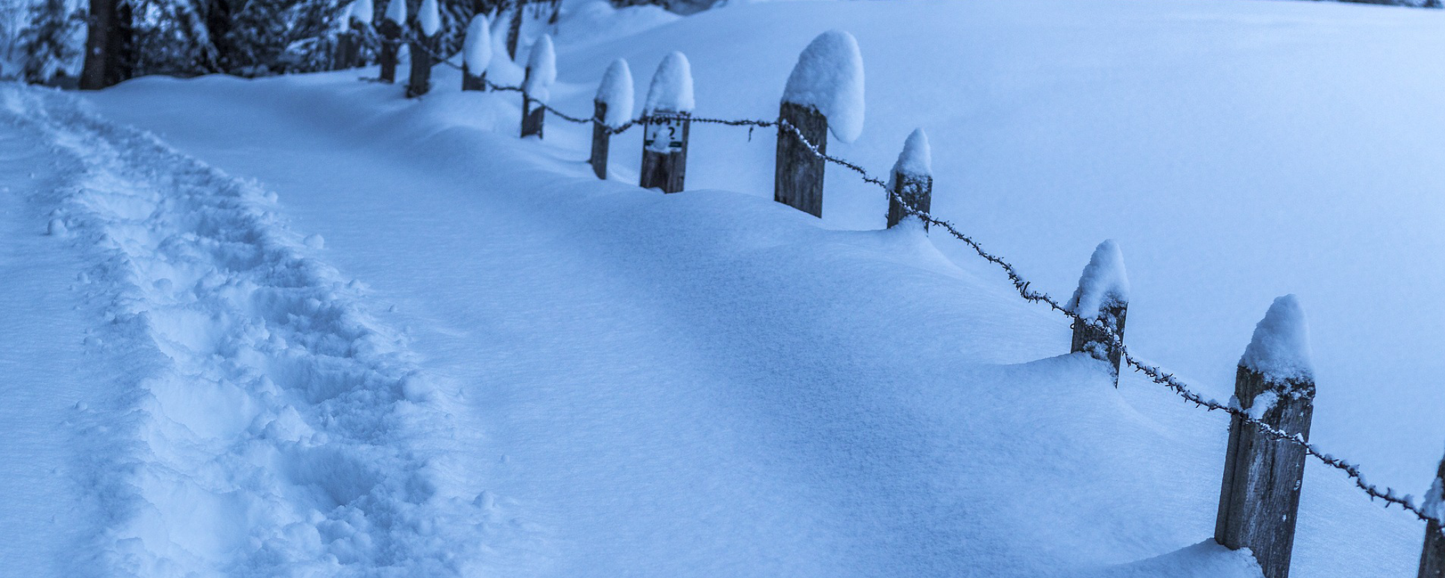 Snow Summit Wide