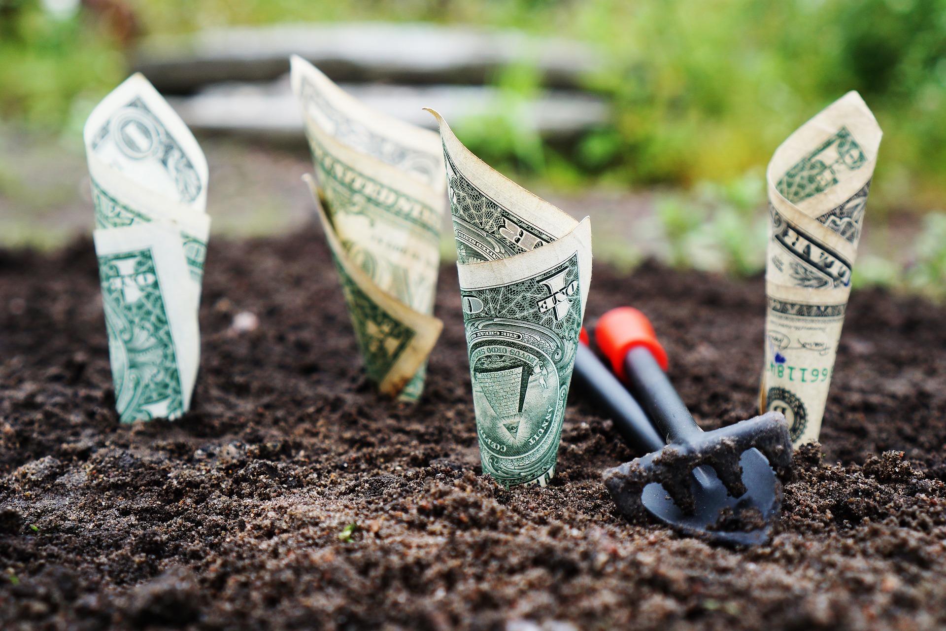 Should I make an investment in landscape business management software?
